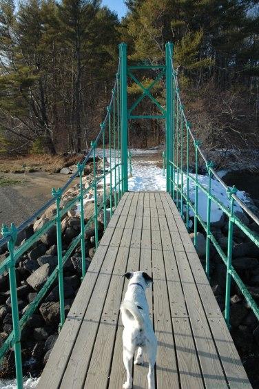Bridge-Cameron