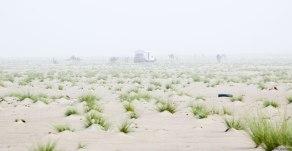 Desert-Fog-1
